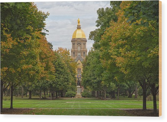 The Golden Dome Of Notre Dame Wood Print