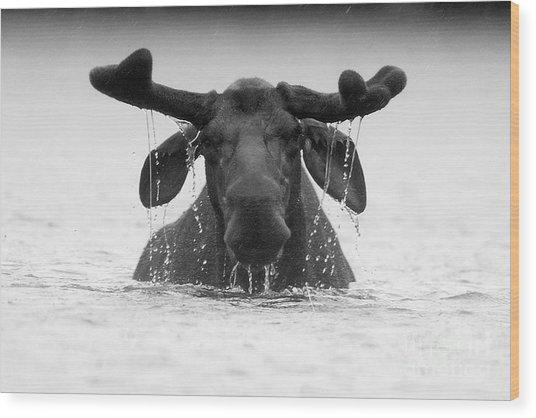 The Goofy Moose Wood Print