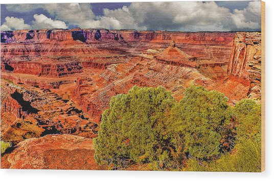 The Grand Canyon Dead Horse Point Wood Print