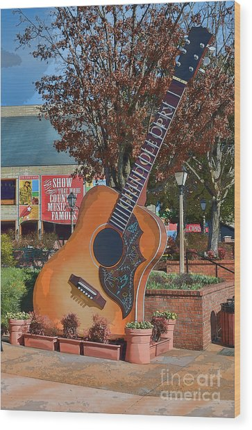 The Grand Ole Opry Wood Print