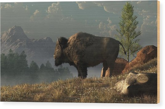 The Great American Bison Wood Print