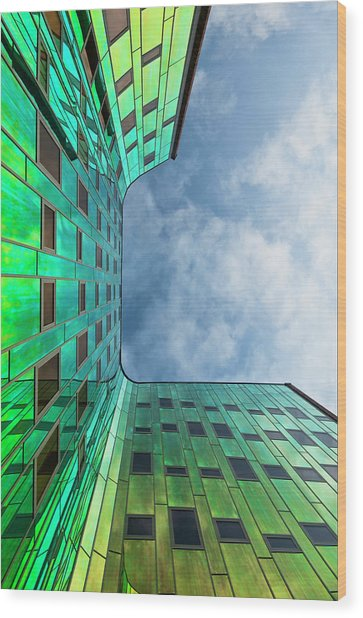 The Green Building Wood Print by Leon