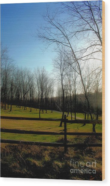 The Green Wood Print