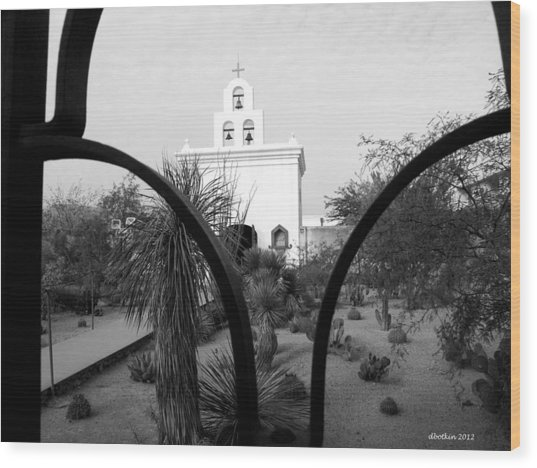 The Grounds Of San Xavier Wood Print
