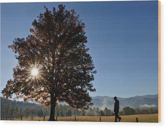 The Guiding Light In Cades Cove Wood Print