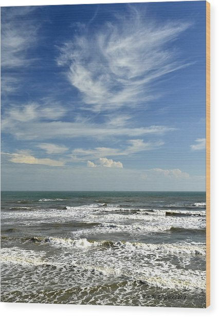 The Gulf Of Mexico From Galveston Wood Print