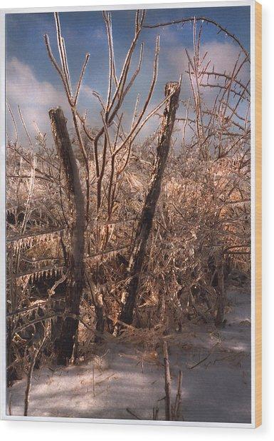 The Ice Will Cometh Again Wood Print
