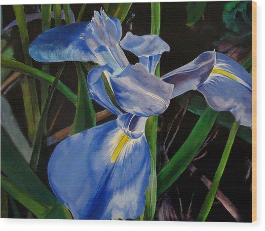 The Iris Wood Print