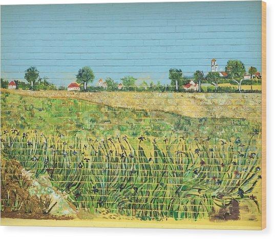 The Irises Of Macpherson Wood Print