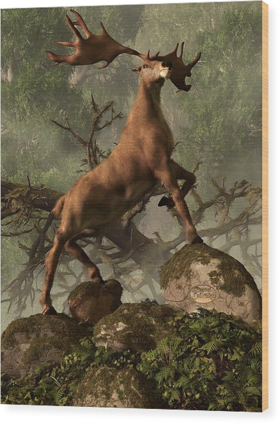 The Irish Elk Wood Print
