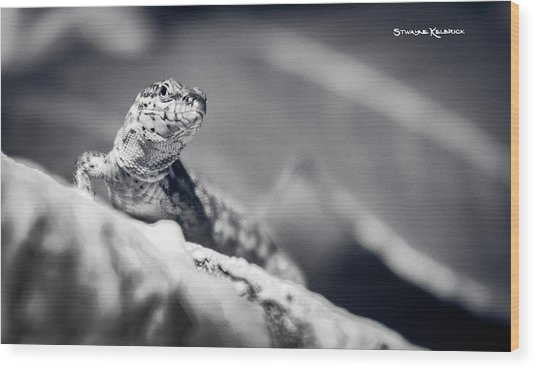 Wood Print featuring the photograph The Iron Lizard II by Stwayne Keubrick