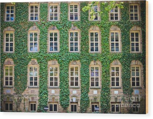 The Ivy Walls Wood Print
