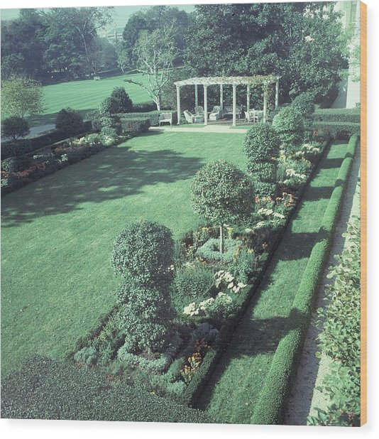 The Jacqueline Kennedy Garden At The White House Wood Print by Horst P. Horst