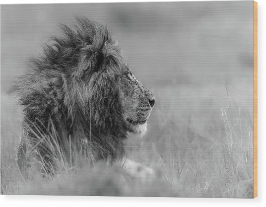 The King Is Alone Wood Print