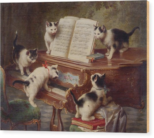 The Kittens Recital Wood Print