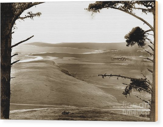 The Lagoon At The Mouth Of The Carmel River  From Fish Ranch California 1905 Wood Print