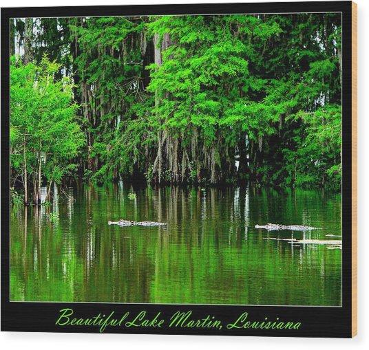 The Lake Martin Habitat Wood Print