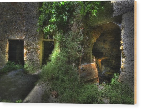 Wood Print featuring the photograph The Last Deposit - L'ultimo Deposito At Balestrino The Ghost Town by Enrico Pelos