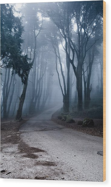 The Last Road Wood Print