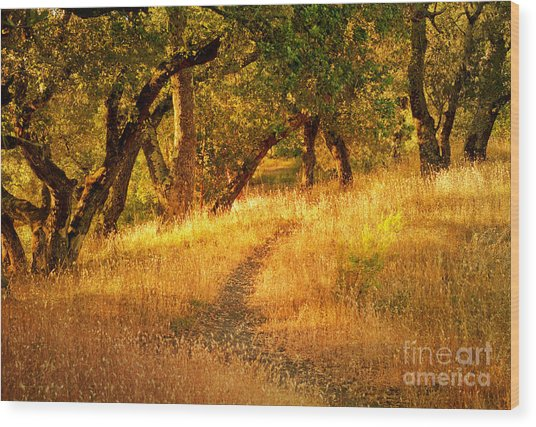 The Late Afternoon Walk Wood Print