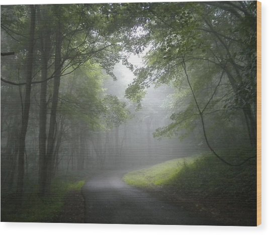 The Light Leading Home  Wood Print