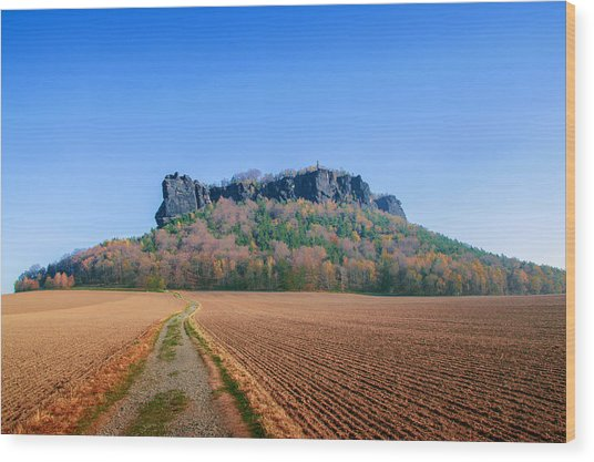 The Lilienstein On An Autumn Morning Wood Print
