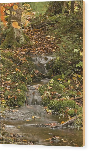 The Little Brook That Could Wood Print