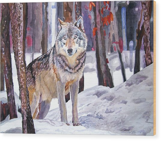 The Lone Wolf Wood Print