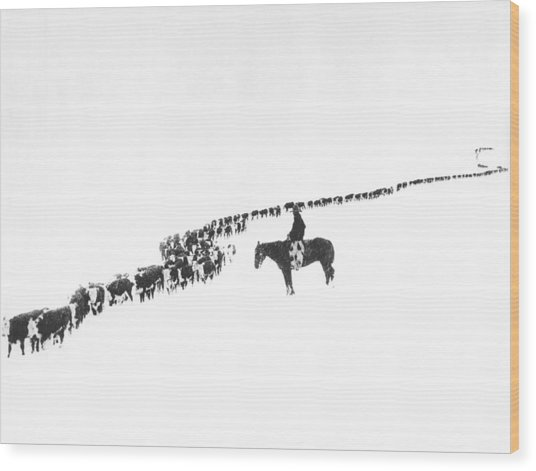The Long Long Line Wood Print