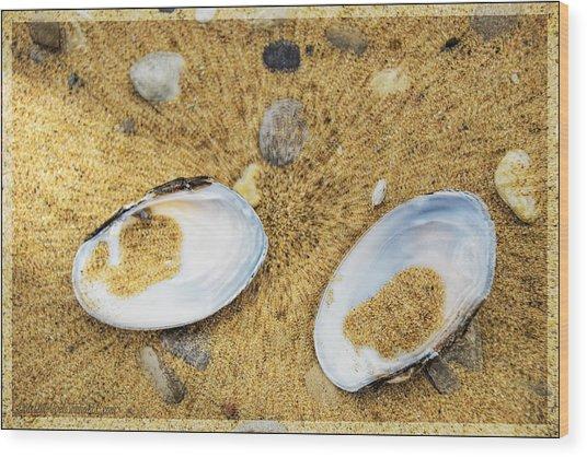 The Lost Freshwater Pearl Michigan Wood Print
