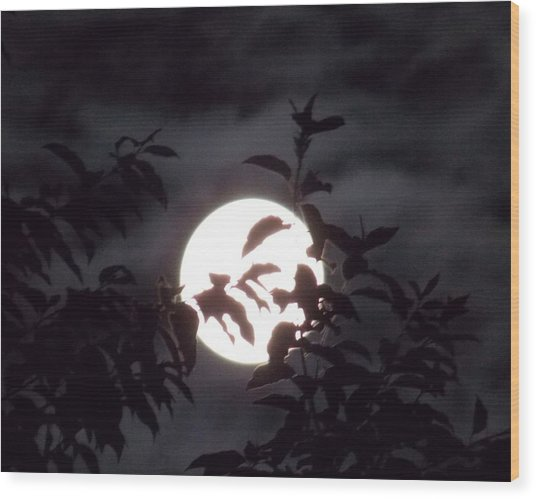 The Lovers Moon Wood Print