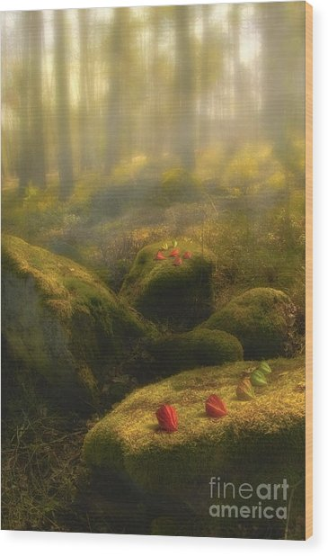 The Magic Forest Wood Print