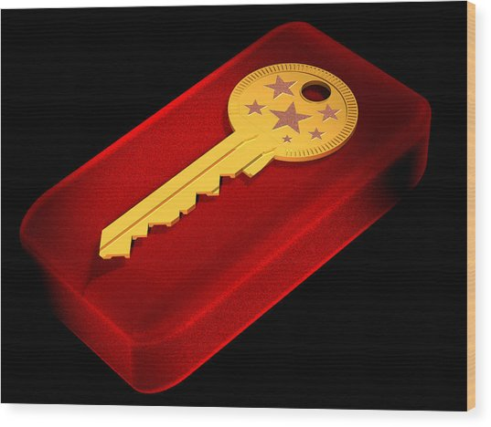 The Key To Happiness Wood Print