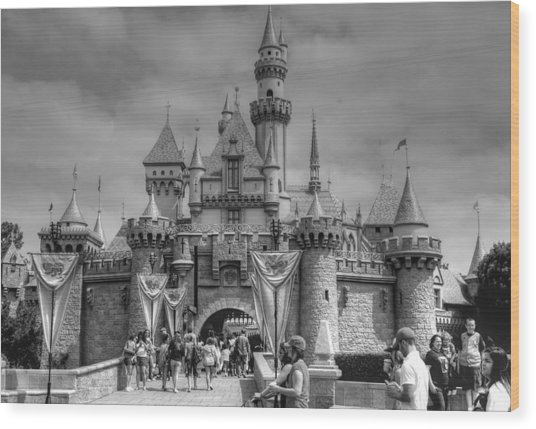 The Magic Kingdom Wood Print