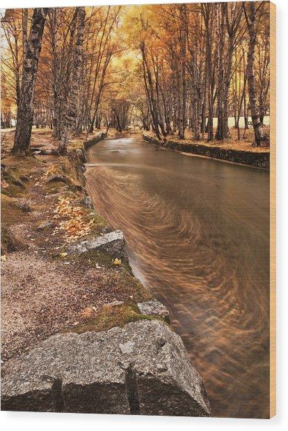 The Magic Of Fall Wood Print