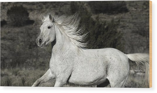 The Mare With The Flying Mane Wood Print