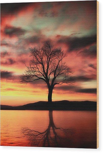 The Memory Tree Wood Print