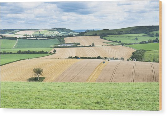 The Meon Valley Wood Print