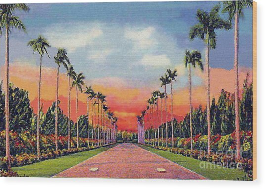The Miami Jockey Club In Hialeah Fl Wood Print