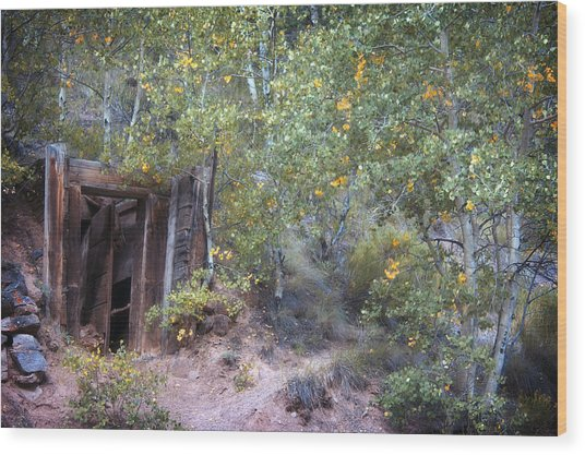 The Mine Shaft Wood Print