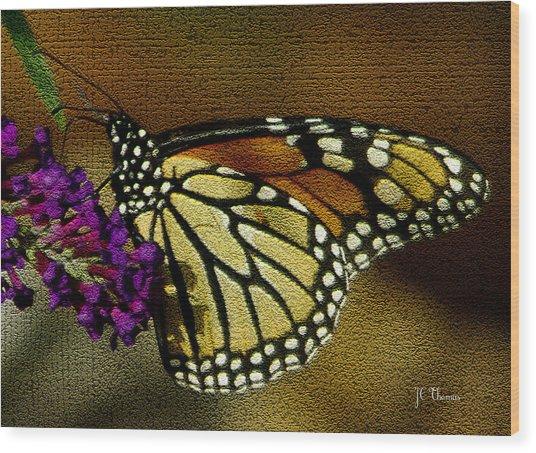 The Monarch / Butterflies Wood Print