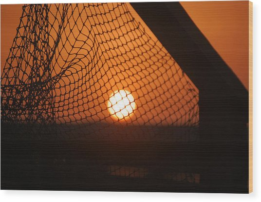 The Netted Sun Wood Print