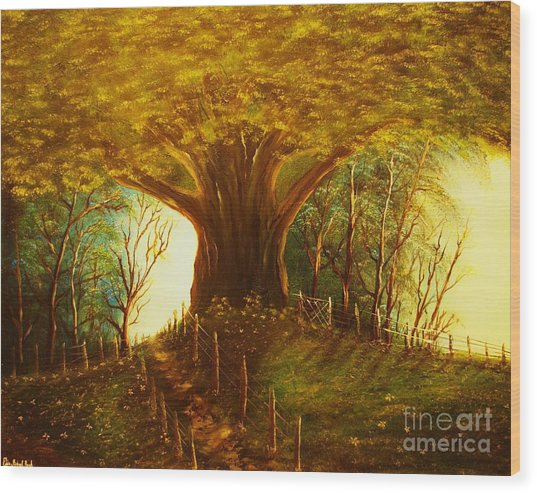 The Oak Tree-original Sold-buy Giclee Print Nr 31 Of Limited Edition Of 40 Prints  Wood Print