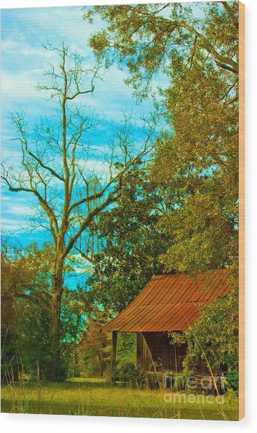 The Old Homestead 2 Wood Print