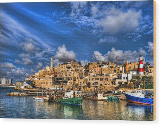 the old Jaffa port Wood Print