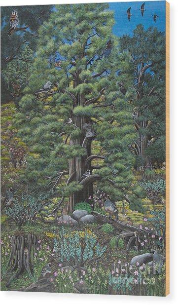 The Old Juniper Tree Wood Print