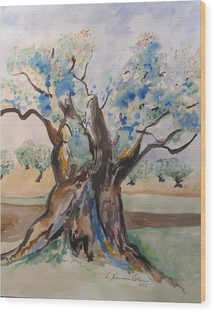The Old Olive Tree Wood Print