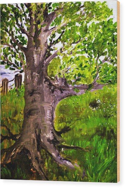 The Old Walnut Wood Print