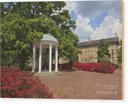 The Old Well At Chapel Hill Campus Wood Print
