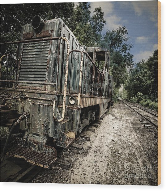 Wood Print featuring the photograph The Old Workhorse by Edward Fielding